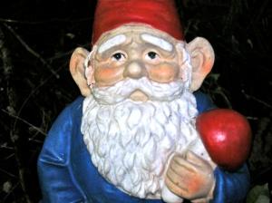 happy gnome portrait