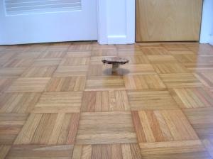 mushroom on floor
