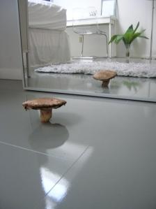 mushroom in mirror