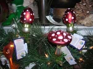 hickory dickory dock glass mushrooms nyack
