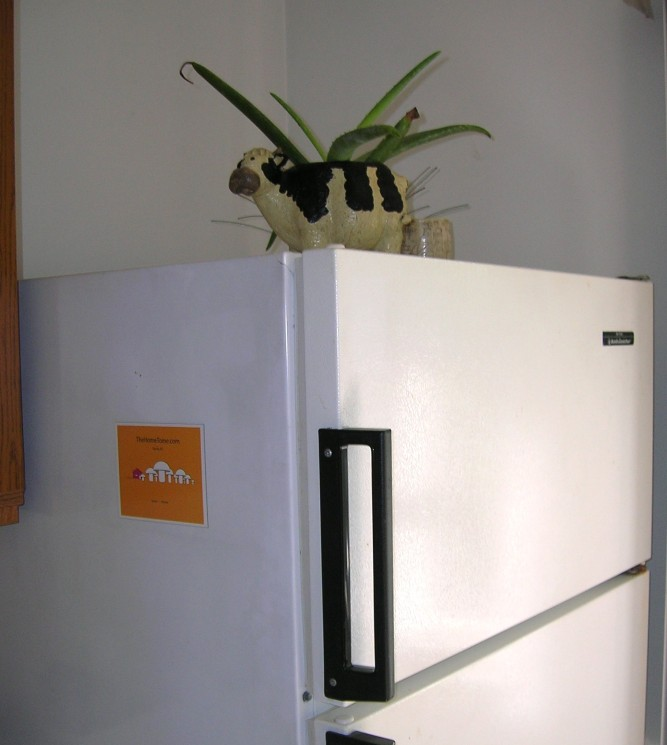 Home Tome Refrigerator Magnet