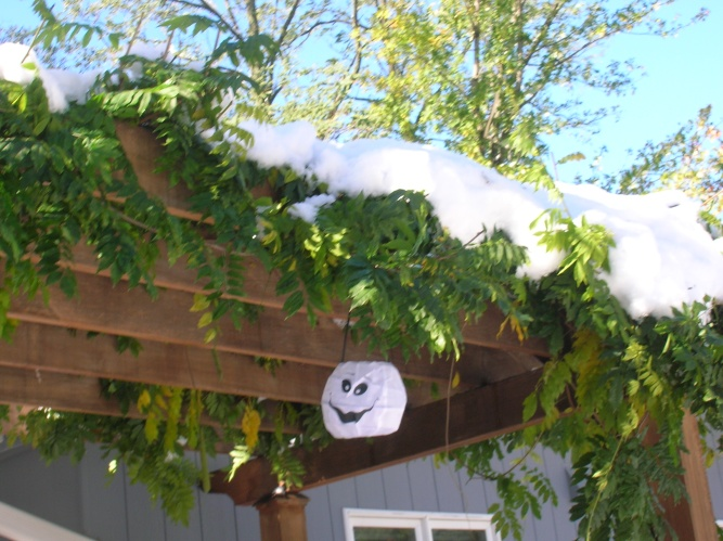 Happy Ghost on Pergola