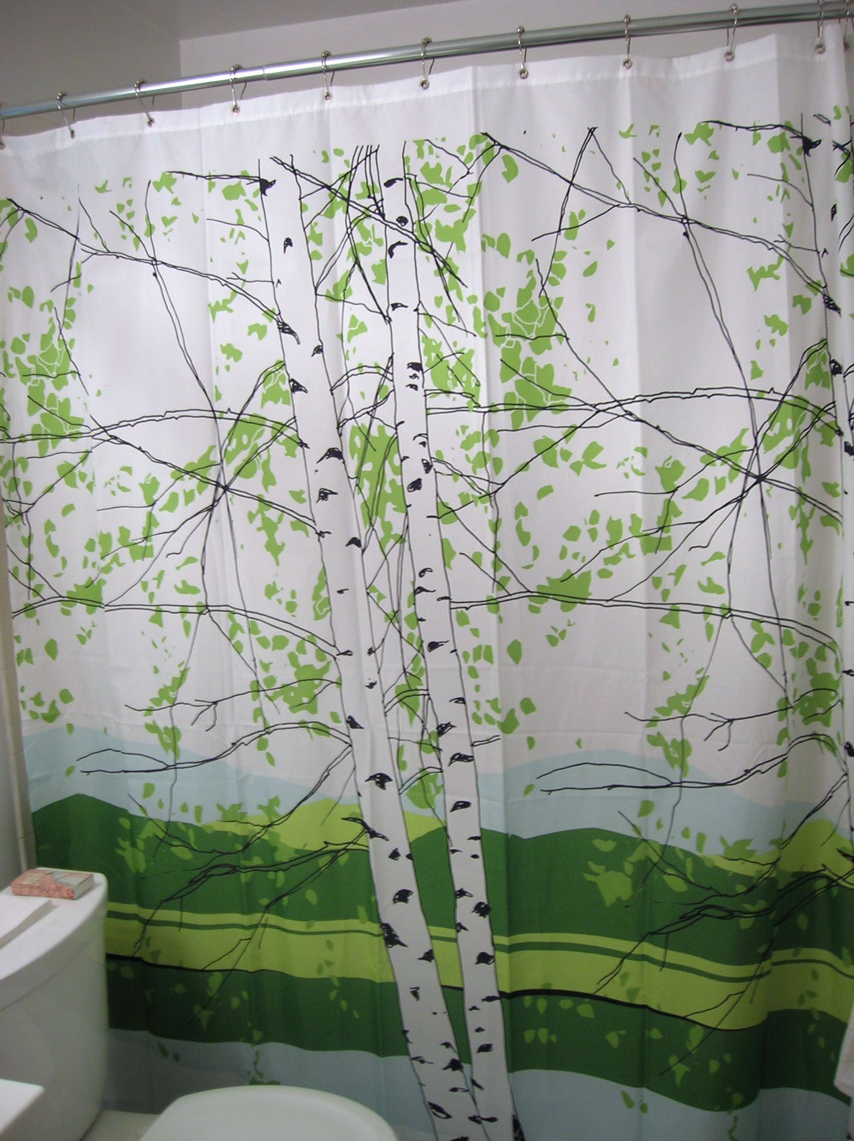 congratulations to our shower curtain | the home tome