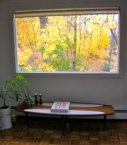 leaves outside window