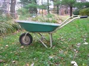 turquoise wheelbarrow