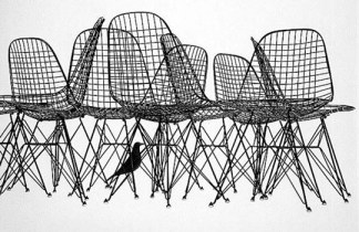 eames-chair-wire-bird
