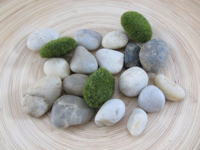 fake moss pebbles