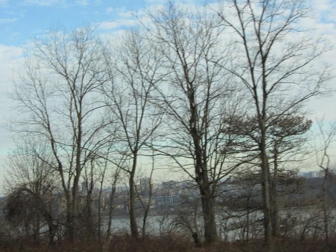 Palisades Parkway view