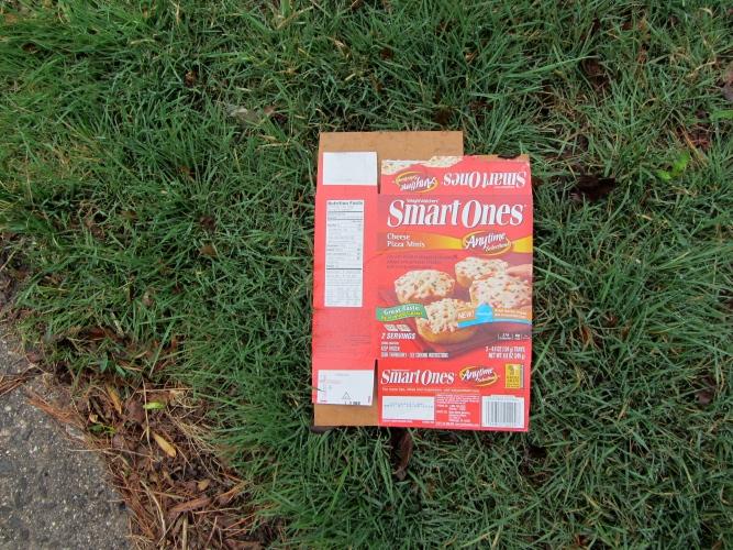 trash on lawn