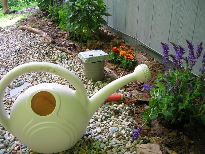 gardening attempt 2