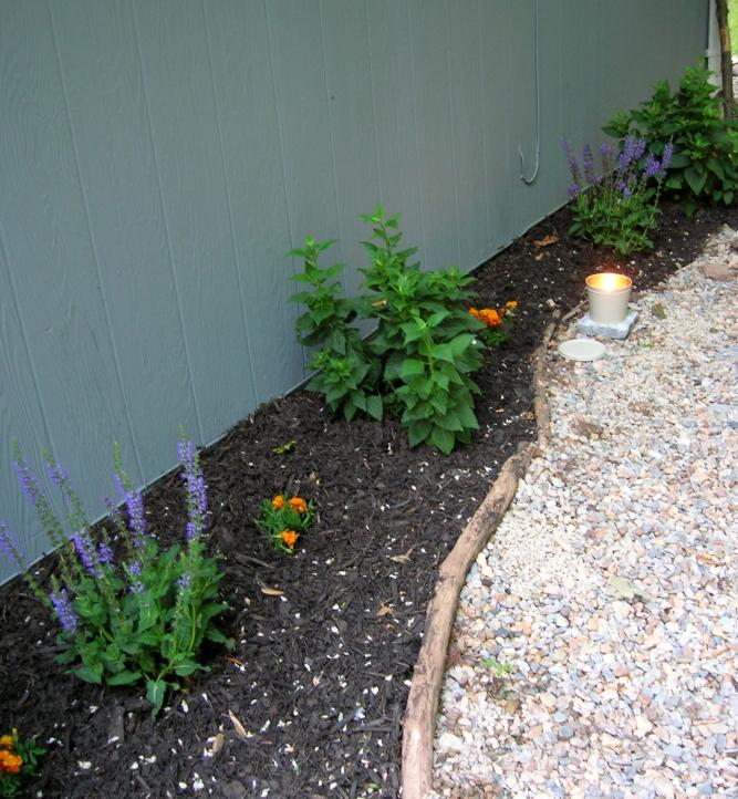 gardening attempt