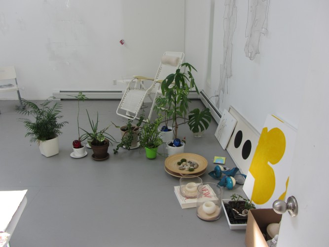 Plants in studio