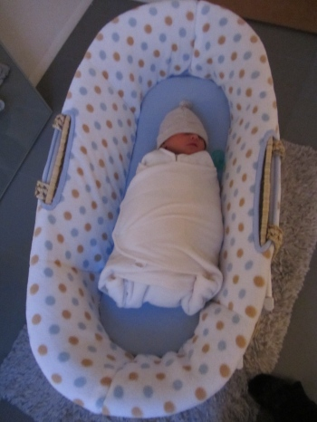 Ian in Moses basket