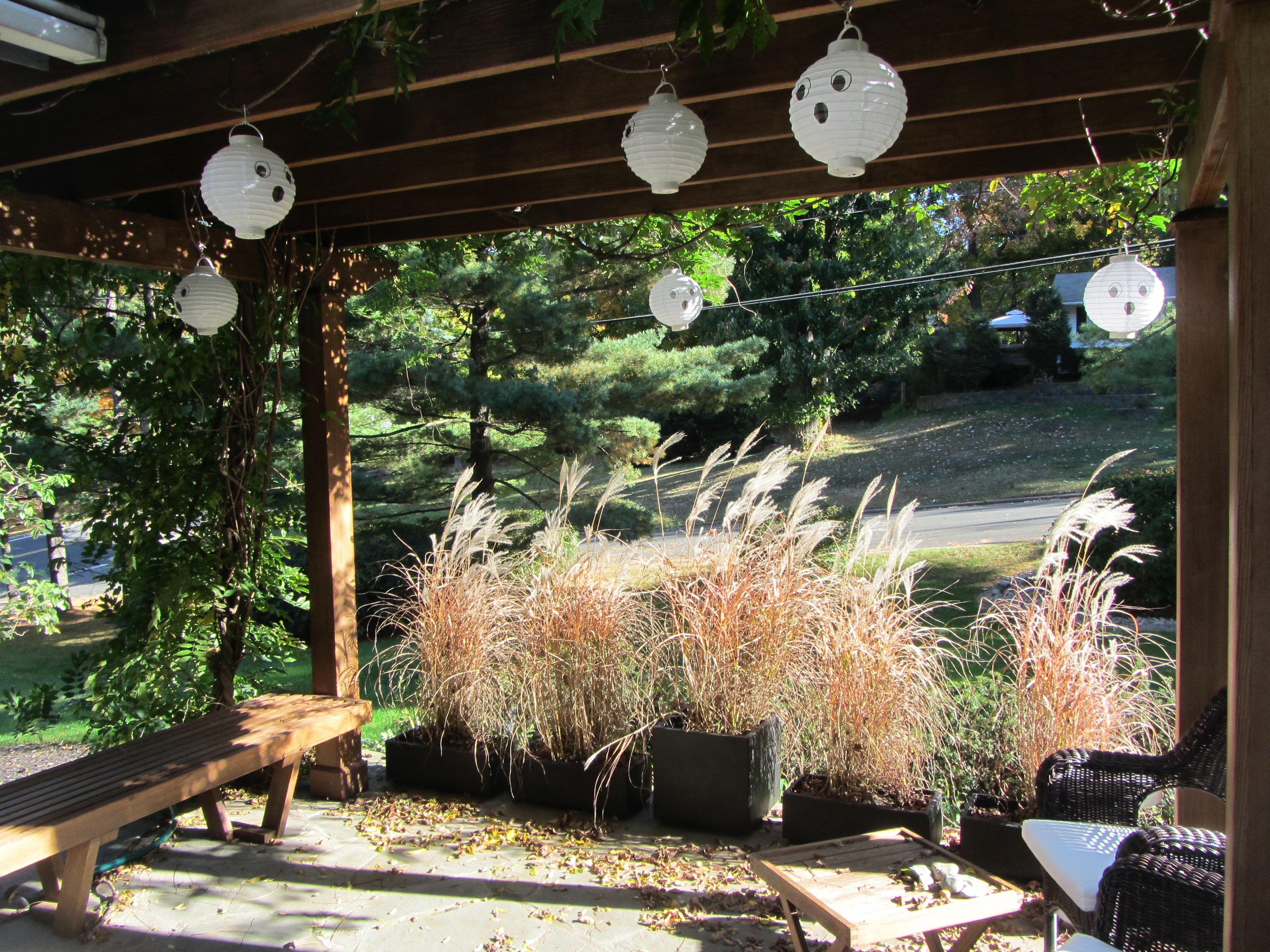 PDF DIY Pergola Designs Better Homes And Gardens Download