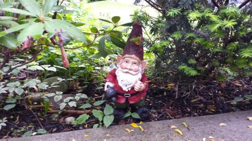 big garden gnome
