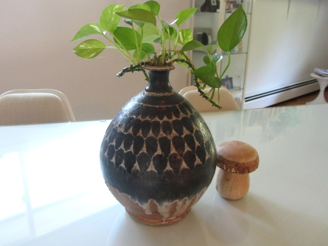 maybe mike devenish pottery