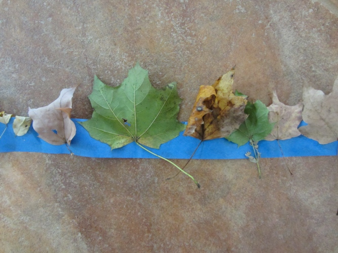 leaf crown toddler tape