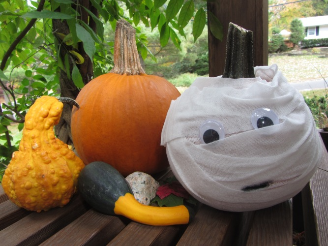 mummy pumpkin and gourds