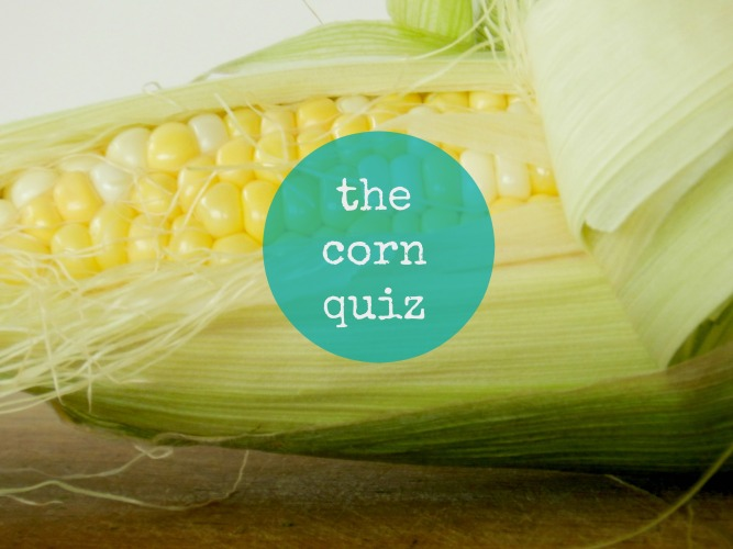 the corn quiz
